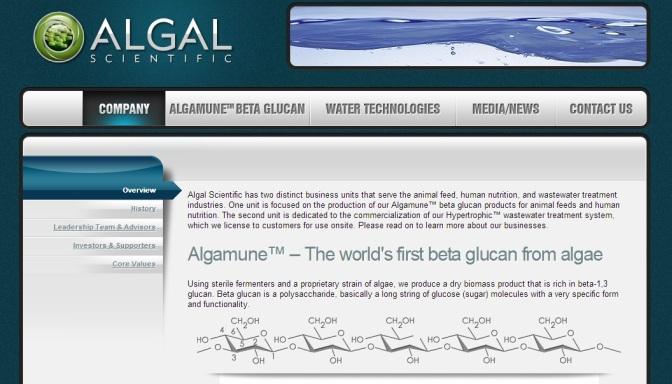 Algae-Based Chemical Company Raises $3M