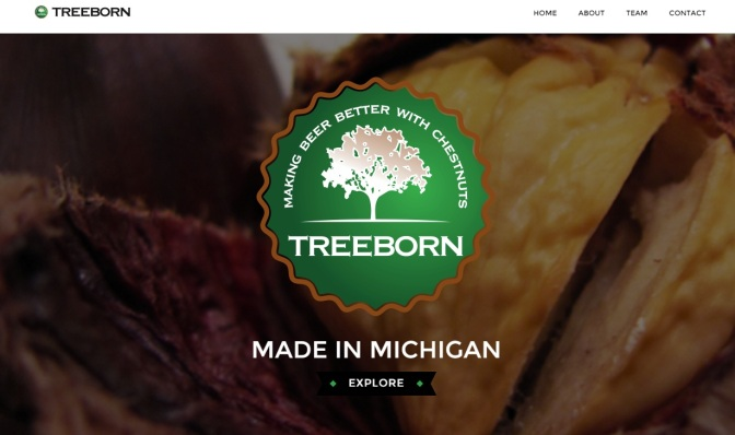 MSU Startup Provides 'Treeborn' Ingredients for Breweries