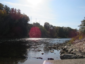 A combination of nature and humanity, the Muskegon River downstream of Hardy Dam with big power lines clearly visible.