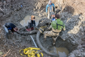 10/01/15           Mammoth Site Dig