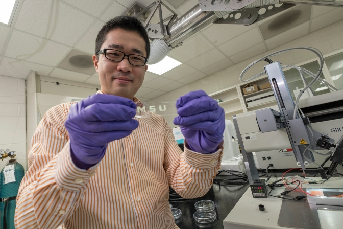A Stretchable Smart Screen? MSU Says Yes